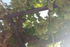 Miraflores 2017-06-19-20h07m35-